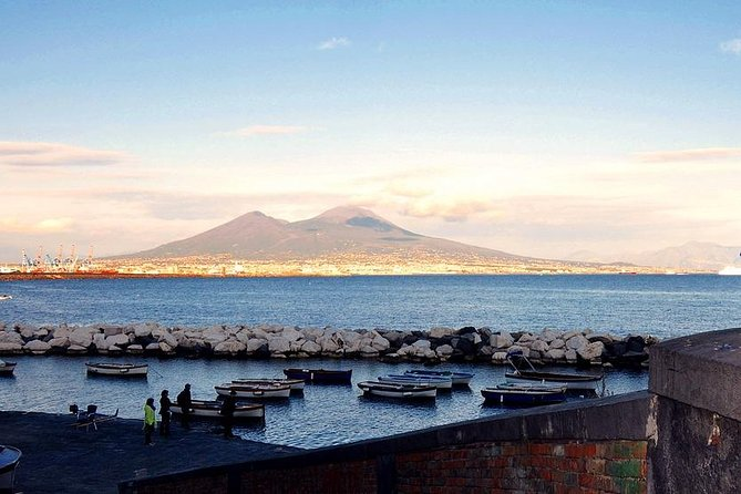 Ancient Pompeii up to the Vesuvius Tour with Local Guide & Driver from Naples