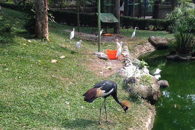 Full Day Indonesia in Miniature Park Tour (TMII) photo 7