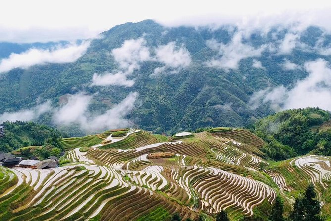 Private Day Tour to Longji Rice Terraces from Guilin