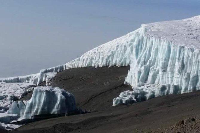 Kilimanjaro climbing day trip