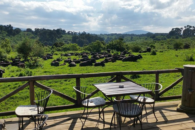 3-Days Selous Game Reserve Lodging Safari