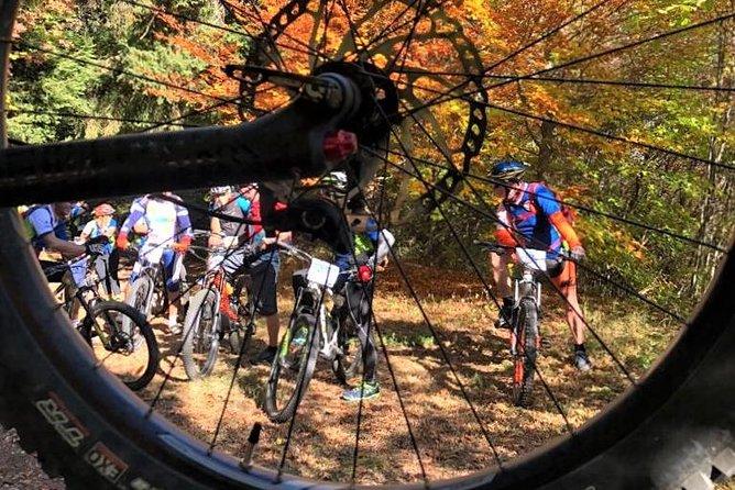 guided e-bike rental tours