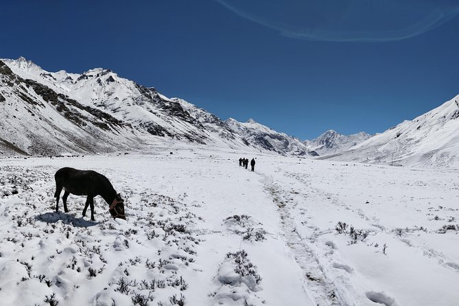 Lamkhaga pass trek photo 6