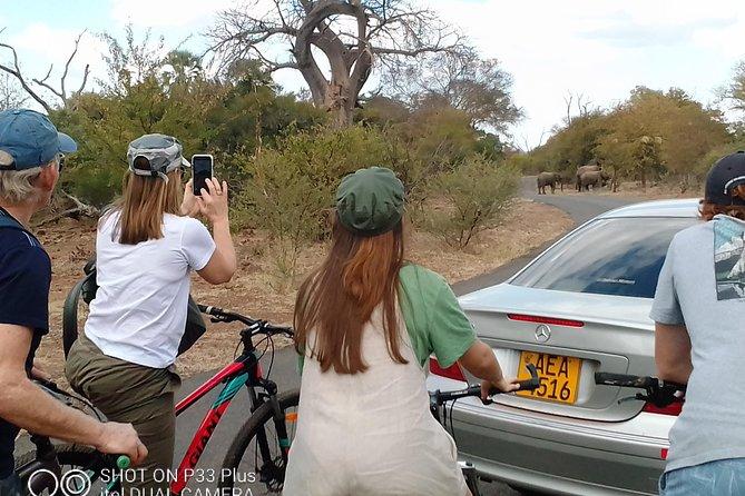 Biking tour in Victoria Falls