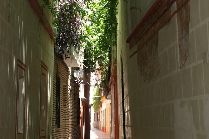 Narrow Street in Seville
