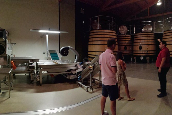 Visit a winery in Rioja