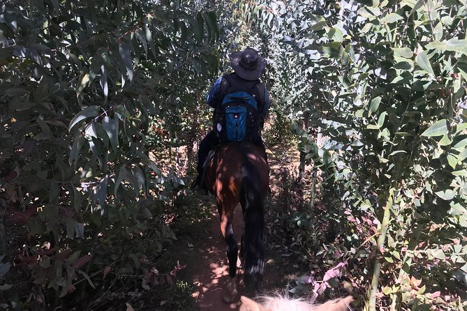Half-Day Horseback Riding Tour from Cusco photo 13