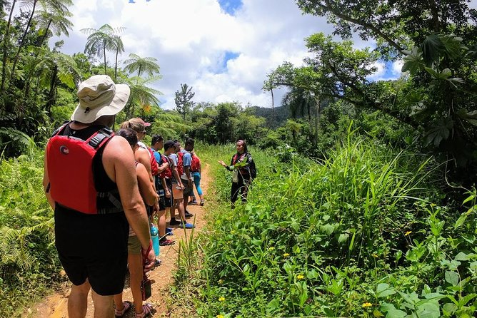 Full Day Guided El Yunque Rainforest Adventure