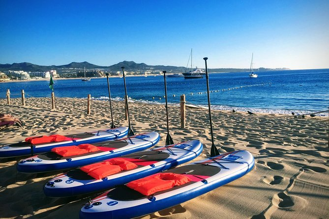 Early Morning Médano Beach Paddle Boarding Tour