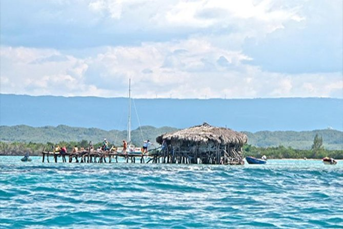 YS Falls and The Pelican Bar Adventure Tour from Kingston