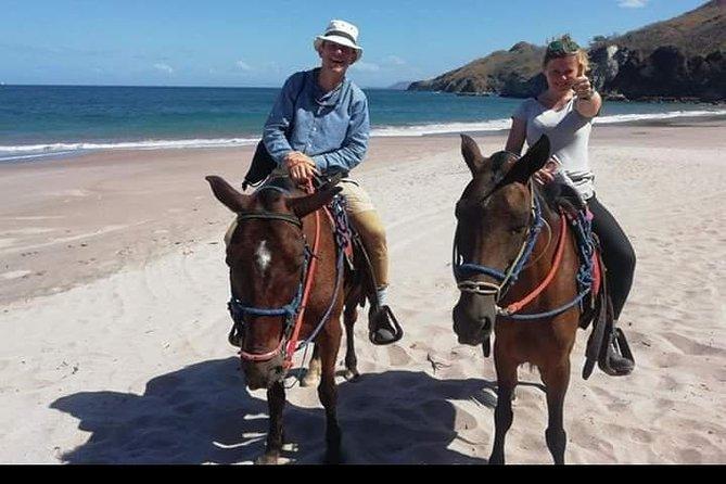 Horseback Riding Tour On The Beach