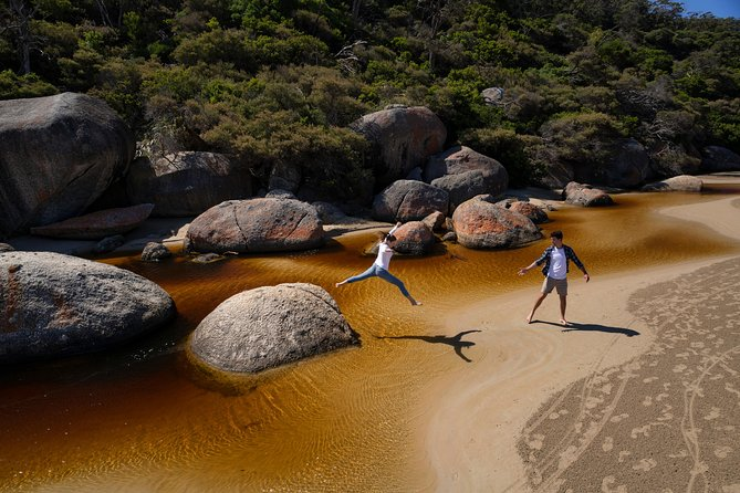 Wilsons Promontory Walks and Wildlife Tour From Melbourne