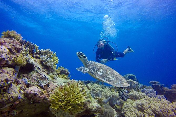 kota kinabalu Mantanani Island Snorkeling\Discover Scuba Diving\ Fundive Daytrip