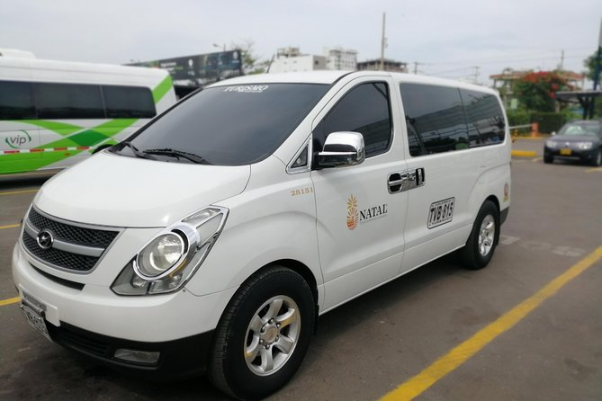 Private transfer from the airport