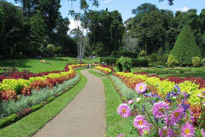 Kandy City Tour from Sigiriya (Private Day Tour)