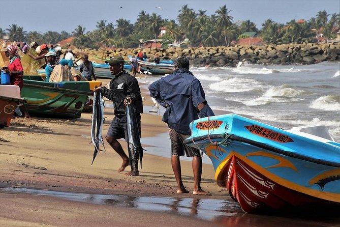 Negombo & Colombo Day Tour