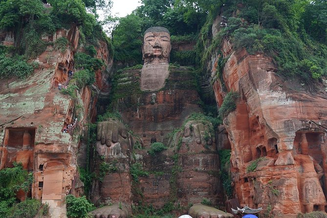 Giant Panda Base and Giant Buddha in Mt. Leshan Group Tour