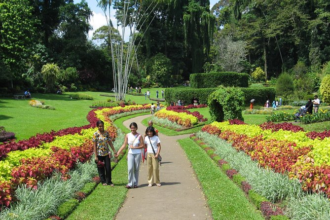 Kandy City Tour from Dambulla City (Private Day Tour) photo 2