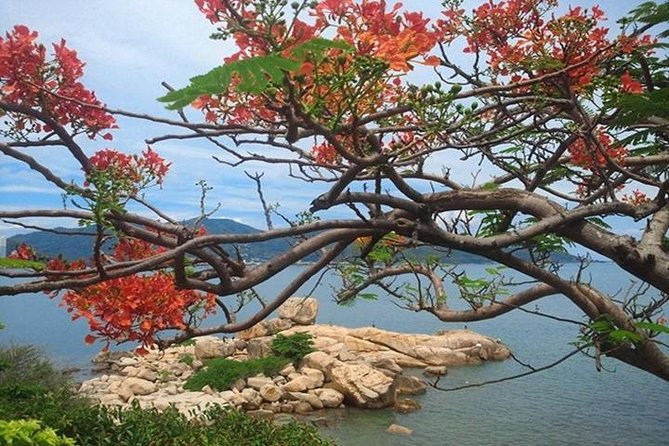 Combo one way airport transfer and half day Nha Trang city excursion