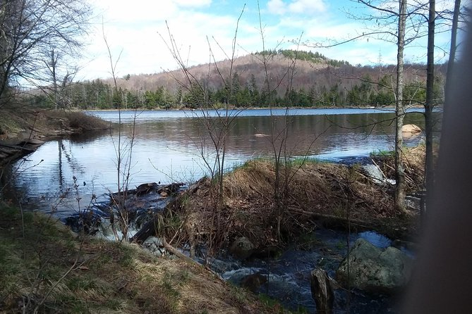 Guided hikes and backpacking trips