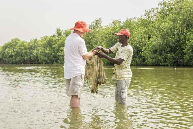 Gita in canoa di 3 ore nelle mangrovie vicino a Cartagena