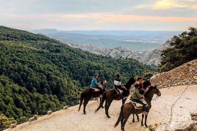 Horseback Riding Parc Natural dels Ports