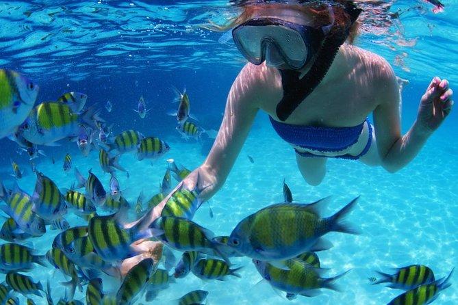 Excursão de snorkel em SAN BLAS por 4 dias, passeio de snorkel + transporte da Cidade do Panamá