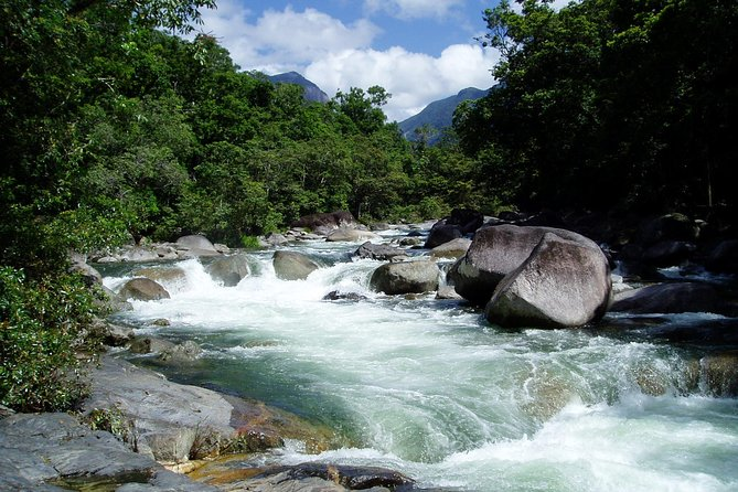 Daintree Rainforest, Cape Tribulation, Mossman Gorge in a day