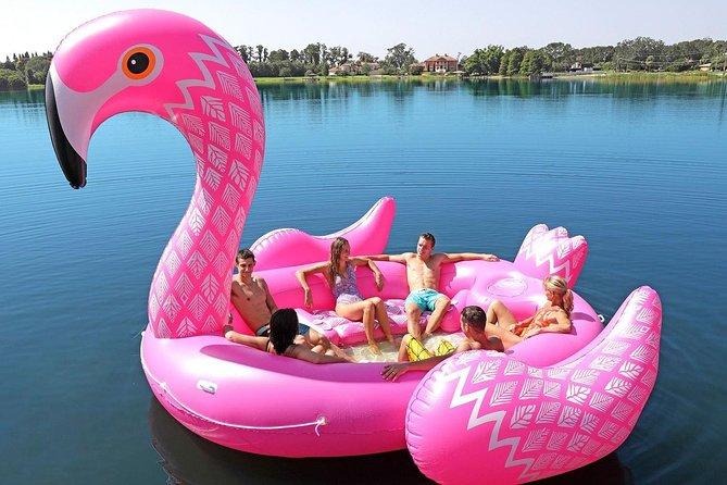 Crazy Flamingo Ride