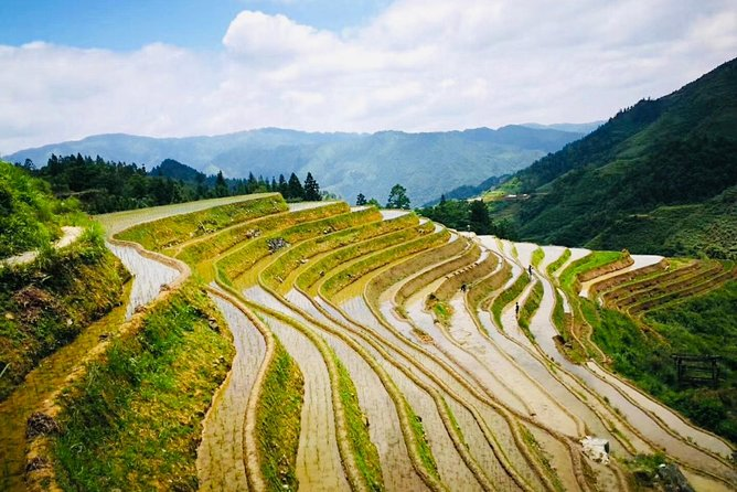 Private Day Tour to Longji Rice Terraces from Yangshuo