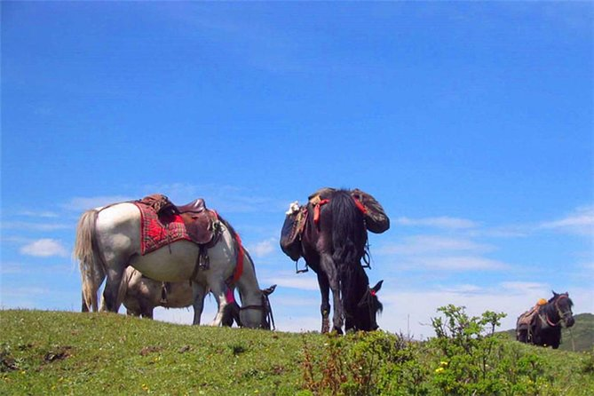 Songpan Horse Trekking 5 Days Tour photo 1