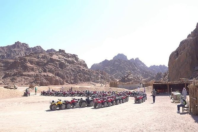 Sharm El-Sheikh : Quad Bike & Desert Safari Adventure with Transfers photo 13