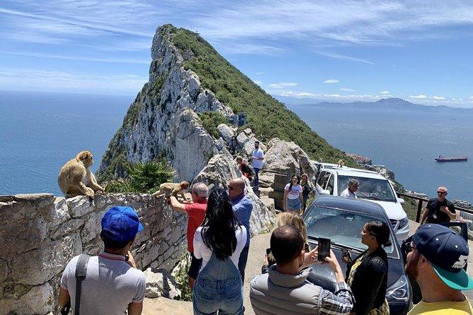 Tours of Gibraltar - Standard PLUS Tour