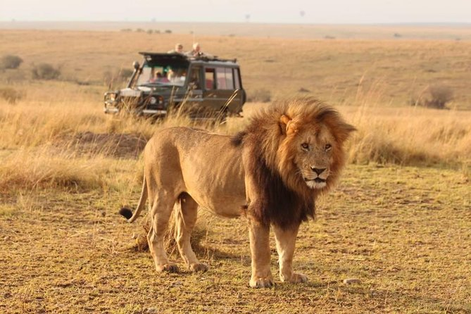 6 Days Masai Mara, Lake Nakuru, Aberdare and Mt. Kenya Safari