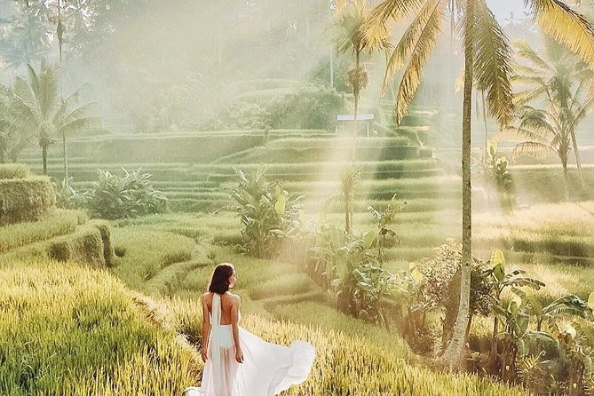 Bali Private Tour: Ubud Day Tour