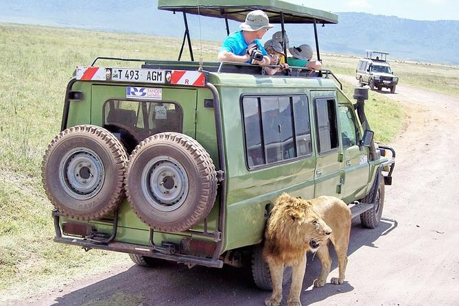 Amazing 2 days visit Tarangire park and Ngorongoro Crater photo 7