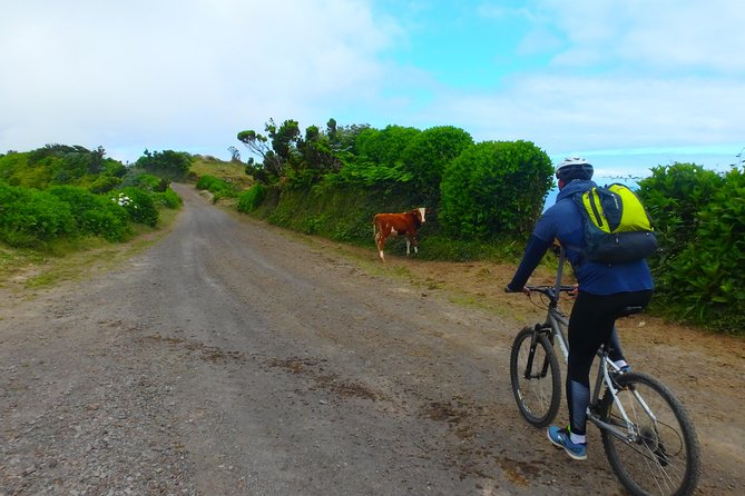 Exploring Sete Cidades by bike photo 1