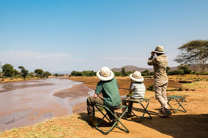 The Lion King: Best Of Kenya Safari (Culture, Wildlife & National Parks) 7-Days
