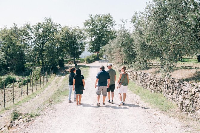 Off Road Wine Tour in Tuscany from Siena