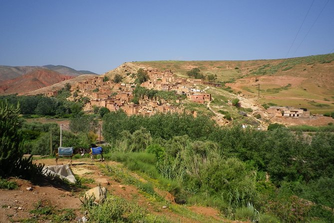 Day Out With the Berbers to High Atlas Mountains