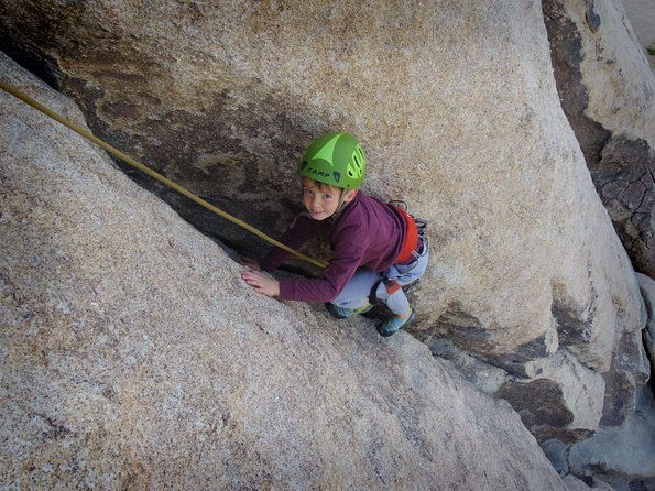 Family Rock Climbing Trips in Joshua Tree National Park (4 Hours)
