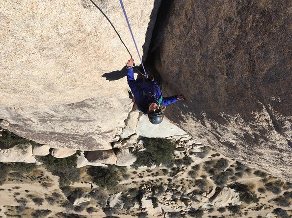 Family Rock Climbing Trips in Joshua Tree National Park (8 Hours)