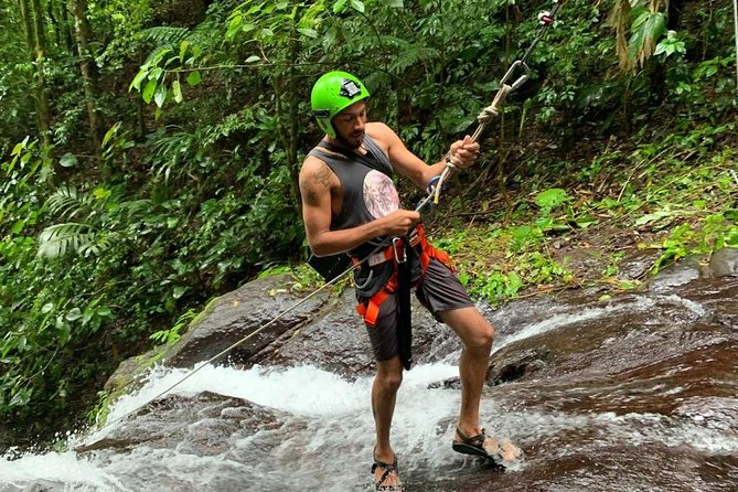 Rappelling down waterfalls with organic lunch and farm tour photo 16