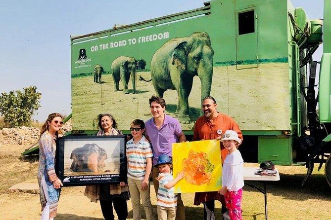 Private AC Transfer Trip To Wildlife SOS (Elephant Conservation Centre Trip)
