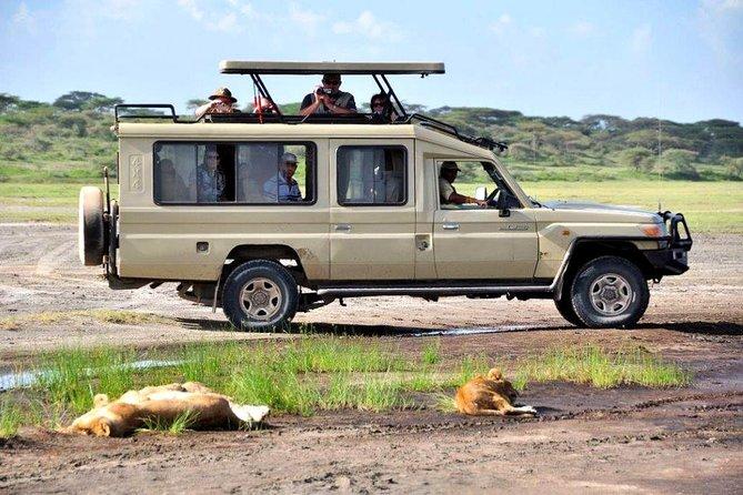 Private 4 Days Masai Mara 4X4 Jeep Lodge Safari
