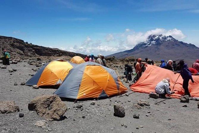 Kilimanjaro Treks (Machame Route)