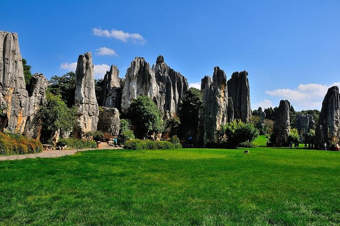 Private day tour in Kunming to Stone forest and cuihu lake with lunch