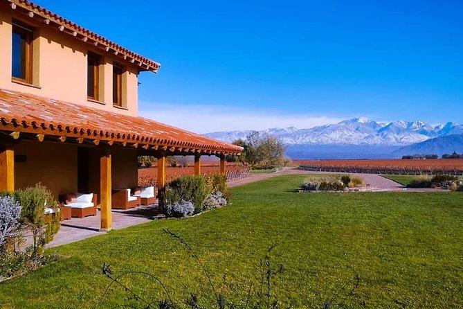 Conociendo la tierra del Malbec, degustación de vino y almuerzo en Luján de Cuyo, Mendoza, ARGENTINA