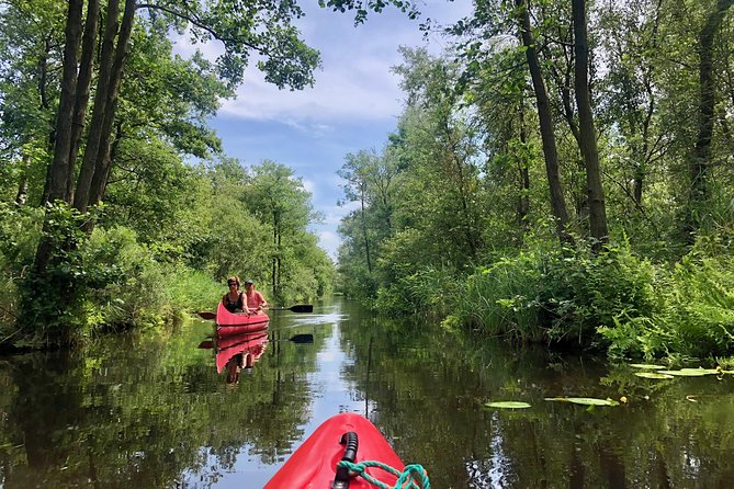 Kayaking National Park & Giethoorn - Private Experience incl. pick-up (regional)