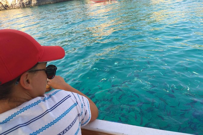 Morning panorama & glassboat